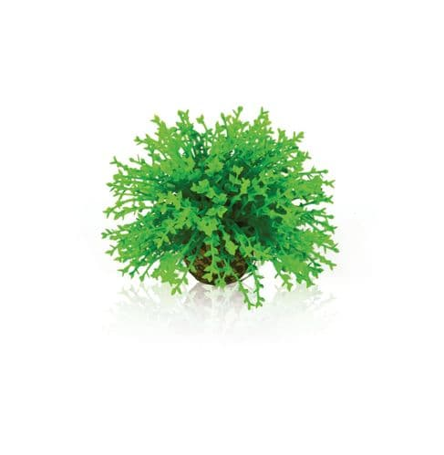 Biorb Flower Ball Green