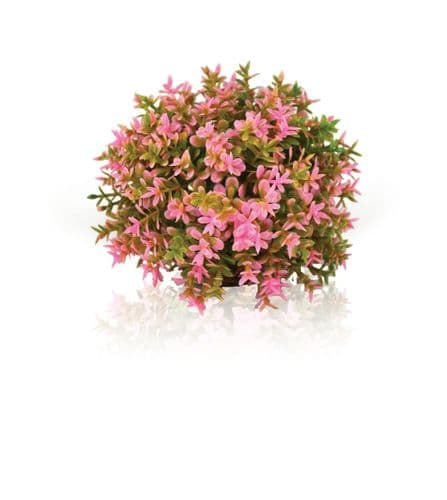 Biorb Flower Ball Pink