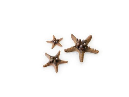 Biorb Sea Star Set 3