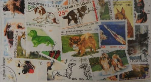 Dogs 50 Stamps (M39)