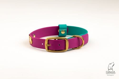 Magenta & Teal Waterproof Collar