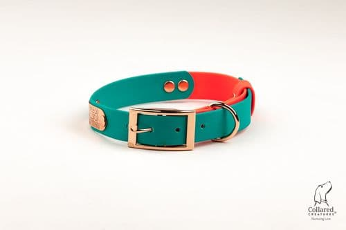 Teal & Neon Pink Waterproof Collar
