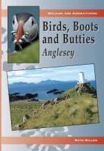 Birds, Boots and Butties: Anglesey