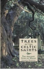Trees of the Celtic Saints