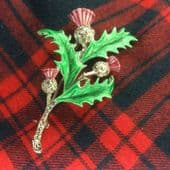 Traditional Thistle Brooch Pin in Enamel with Marcasite 1950s to 1960s Vintage(sold)