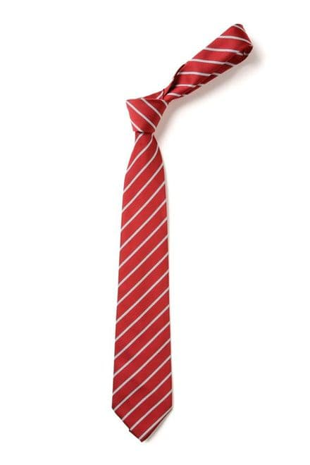 Holwell Primary School Tie ( Year 5 & 6 )