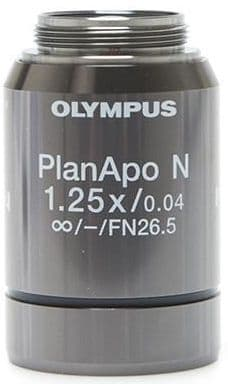 Plan APO Olympus infinity 1.25X non-coverglass corrected, biological type