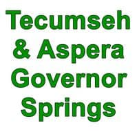 Tecumseh & Aspera Governor Speed Springs