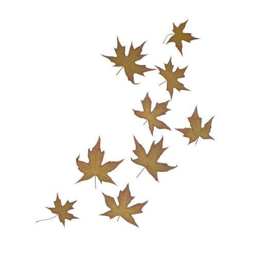 Auburn Mini Maple Leaves