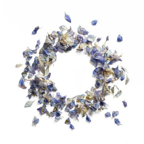 Delphinium Flower Petals - Vintage Blue