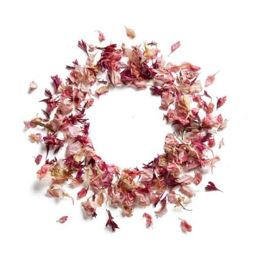 Delphinium & Wildflower Petals - Byzantine Pink