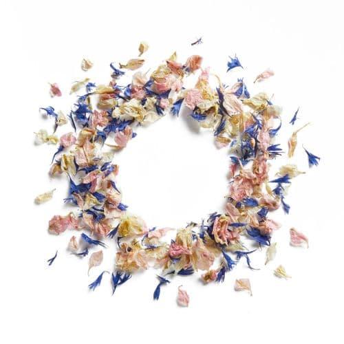 Delphinium & Wildflower Petals - Vintage Dream