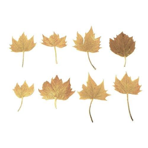 Golden Brown Mini Maple Leaves