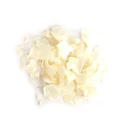 Hydrangea Petals - Parchment