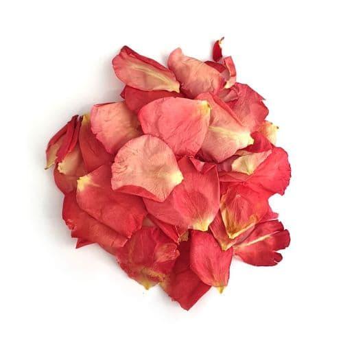 Natural Rose Petals - Kensington