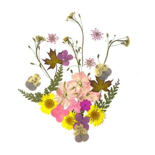 Neapolitan Flora & Greenery Collection