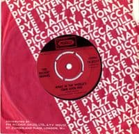 Rockin' Berries,The - What In The World's Come Over You/You Don't Know What You Do (7N 35217)